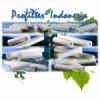 Chisso Filter Cartridge profilterindonesia new  medium