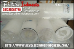 High Flow Pleated Cartridge Filter Indonesia  large